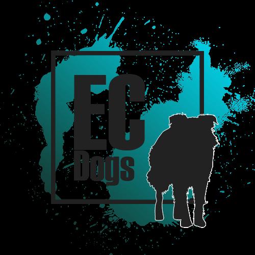 Hundeblog EquiCani