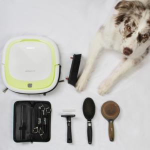Meine ultimativen Tipps für eine saubere Wohnung trotz Fellwechsel