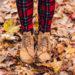Unsere liebsten Herbstfavoriten für Hund und Herrchen