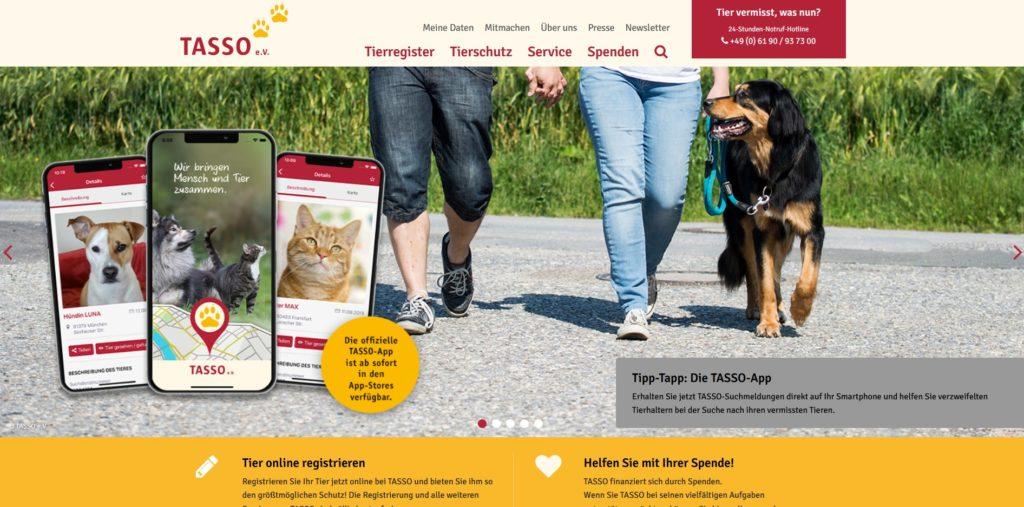 Versicherungen & Co. für den Hund